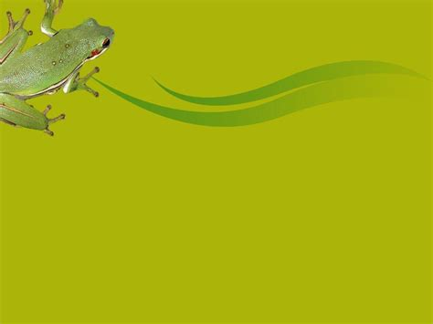 animal powerpoint templates frogs backgrounds wallpaper cave