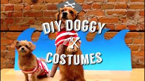 easy diy halloween costumes   pet dog youtube