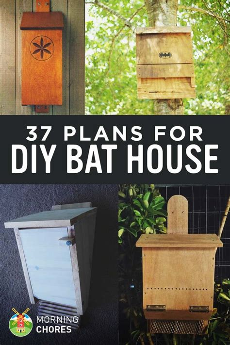 free bat house plans best 25 bird house plans ideas on pinterest diy birdhouse bird houses diy and
