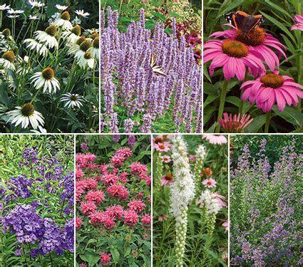 preplanned flower gardens preplanned gardens for sun white flower farm