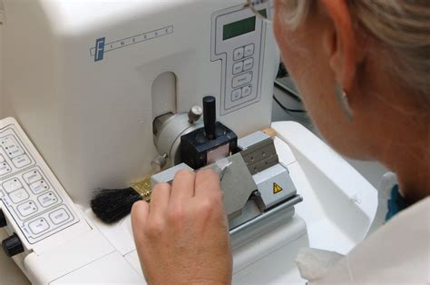 microtome sectioning procedure file tissue processing microtome is used to cut a ribbon
