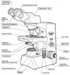 microscope diagram worksheet worksheets for