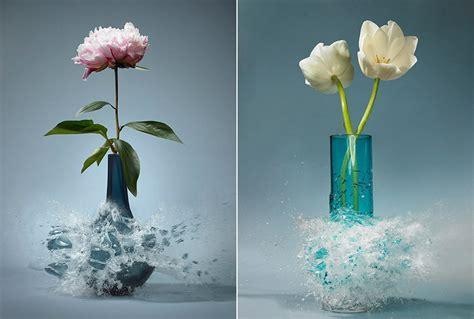 Flower In A Vase Picture Exploding Vases By Martin Klimas Fubiz Media