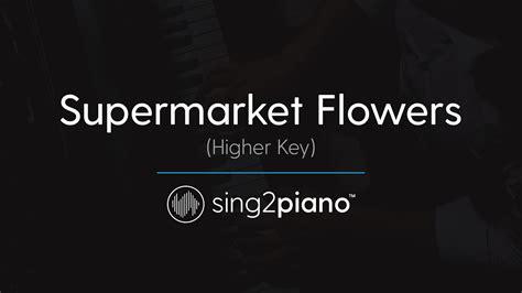 download mp3 ed sheeran supermarket flowers download mp3 supermarket flowers higher piano karaoke