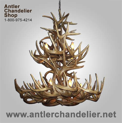 Real Antler 2 Tier Whitetail Deer Chandelier 12 Lights Antler Chandelier Shop