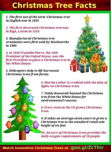 what are the facts about christmas tree quora