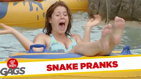 best of just for laughs scary snake pranks best of just for laughs gags