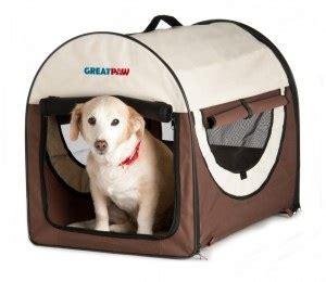 crate your golden retriever puppy popular types of golden retriever carriers golden retriever and puppies
