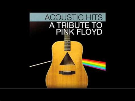 comfortably numb acoustic pink floyd quot comfortably numb quot acoustic hits cover full