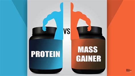 best protein mass gainer protein vs mass gainer bodybuilding india
