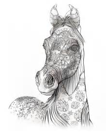 coloring pages for adults horses coloring book page coloring for grownups selah