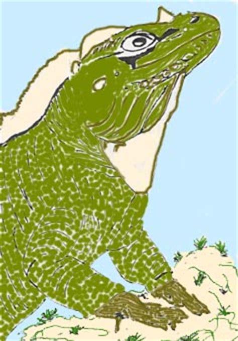 isla de mona de puerto rico florafauna datos isla de mona de puerto rico flora fauna datos