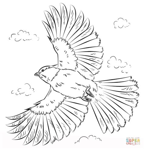 black capped chickadee in flight coloring page free