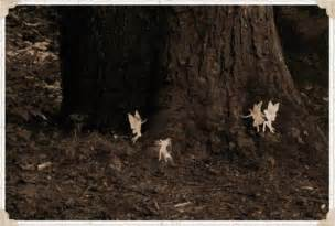 This is the story of the cottingly fairies