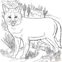 coloring page gray fox grey fox coloring page free printable coloring pages