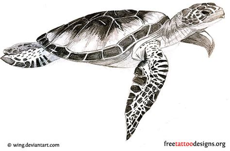 sea turtle tattoo designs turtle tattoos polynesian and hawaiian tribal turtle designs
