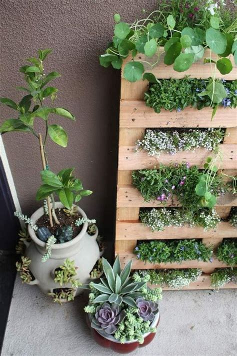 mini herb garden cool diy green living wall projects for your home