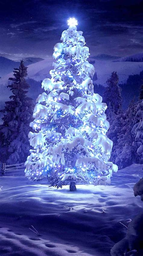 2014 lightened christmas tree iphone 6 wallpaper snow