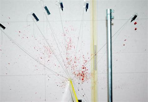 blood spatter analysis uk i interviewed the forensic pathologist who worked on