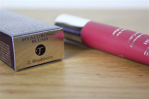 by terry hyaluronic blush blushberry 2 net a portercom by terry hyaluronic blush blushberry a beauty junkie