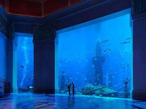 hotel room underwater a closer look at dubai s underwater hotel angelic hugs