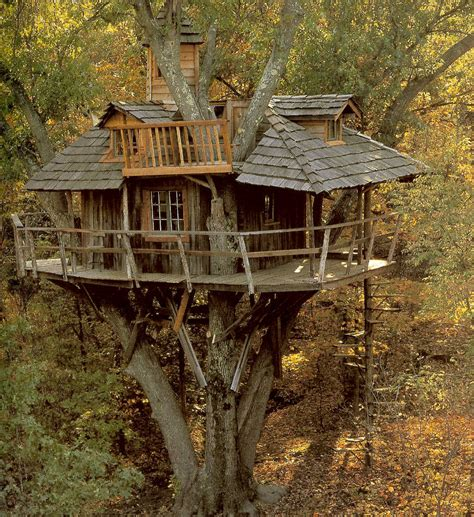 real life treehouse i like treehouses sillyamerican