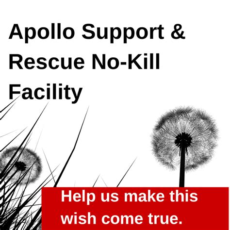 how to make our mental pictures come true a series of easy lessons in the of visualizing classic reprint books needs for apollo s no kill facility apollo support