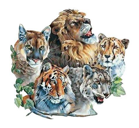 fotos animales juntos fotos de animales juntos imagui