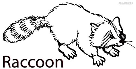 Printable Raccoon Coloring Pages For Kids Cool2bkids Raccoon Coloring Page