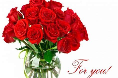 imagenes mil rosas para ti rosas rojas 161 para ti 52954