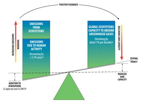 Ecological Imbalance In Nature Essay by Copenhagen 2009 Unep Ecosystems Approach Papers To Support Climate Change Negotiations