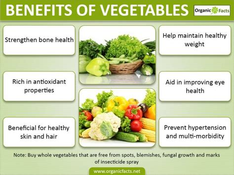 Can You Use Vegetable In An L benefits of vegetables organic facts