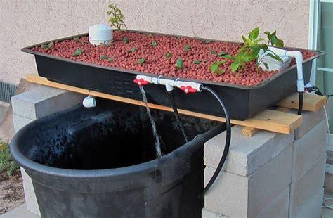backyard aquaponics kits diy aquaponics projects for beginners