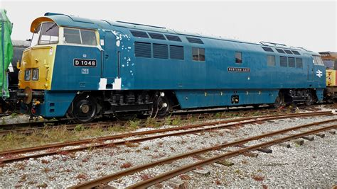 Large Sheds file no d1048 western lady class 52 6137384220 jpg