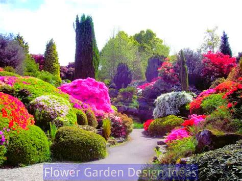 flower gardening for beginners flower gardening for beginners picture 187 home decorations insight
