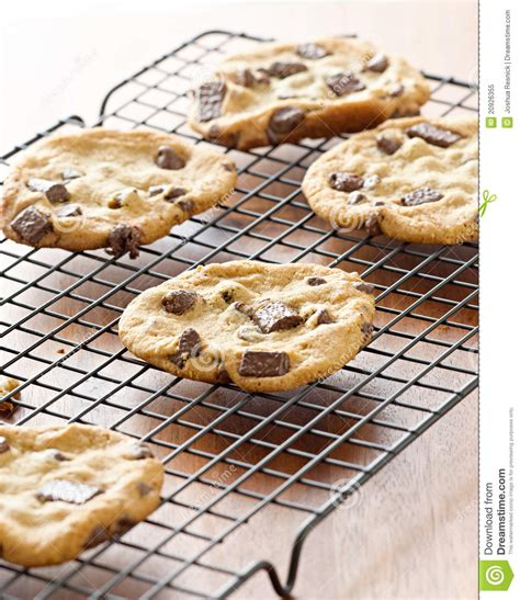 Cooling Racks For Cookies by Cookies Cooling On Cooling Rack Royalty Free Stock Photo