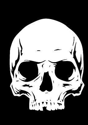 Details about High Detail Skull Airbrush Stencil - Free UK