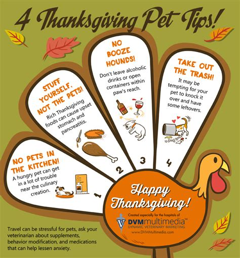 Country Home Plans four thanksgiving pet safety tips back bay veterinary