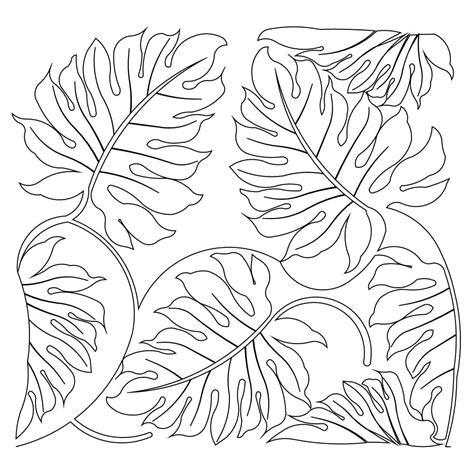 tropical leaves coloring pages jungle vines coloring pages leaves grig3 org