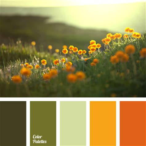 muted green color color of orange flowers muted shades of green the