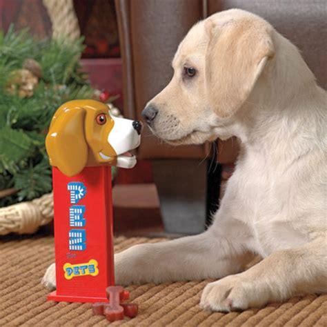 treat dispenser for dogs pez treat dispenser the green