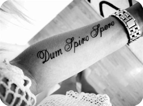 dum spiro spero tattoo dum spiro spero designs search tattoos