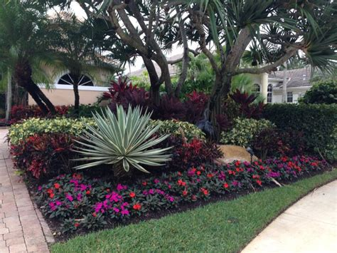 tropical front yard landscaping ideas front yard design tropical landscape miami by