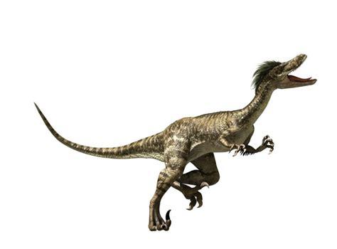 tarbosaurus    picture gallery  hancinema  korean