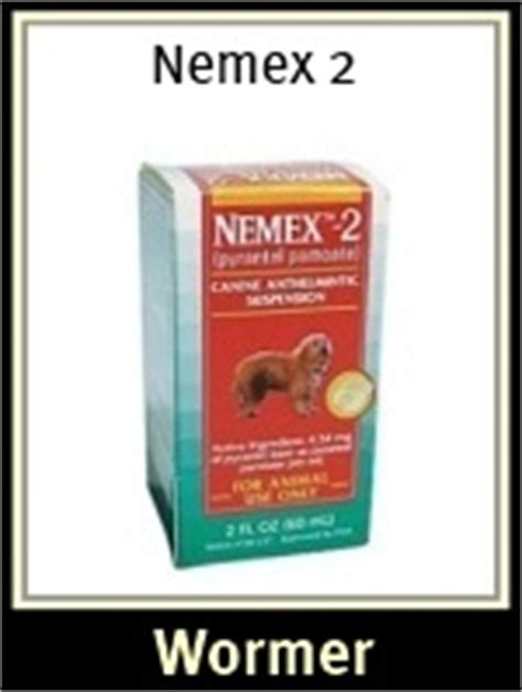 nemex 2 dosage for puppies roundworms in dogs roundworm treatment