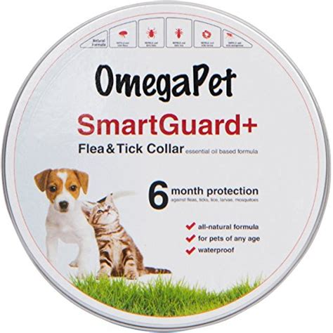 best flea collar for puppies best flea collar for dogs flea collars