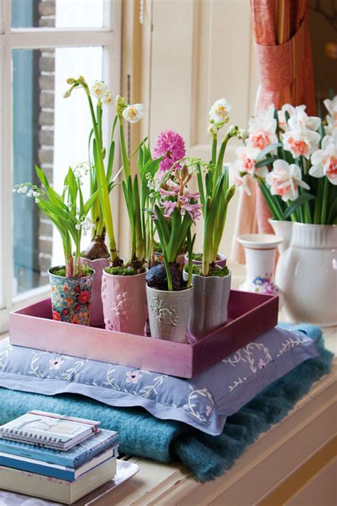 Decorations For The Home by Decorating Ideas Refresh Your Home With Flowering Bulbs