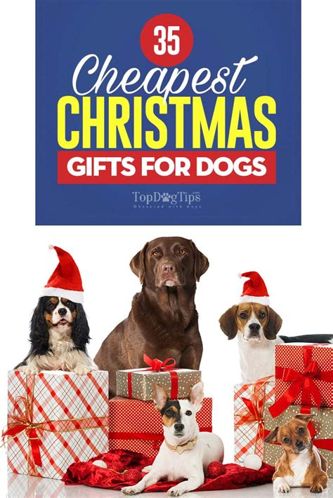 34 cheapest christmas gifts for dogs that won t break your