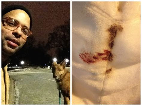 puppy period nate hill chases his covered in period blood for thought catalog
