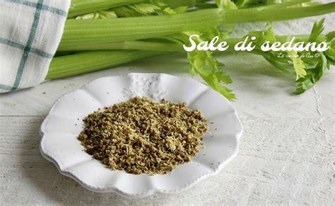 sale di sedano sale di sedano ricetta per un condimento sano e naturale